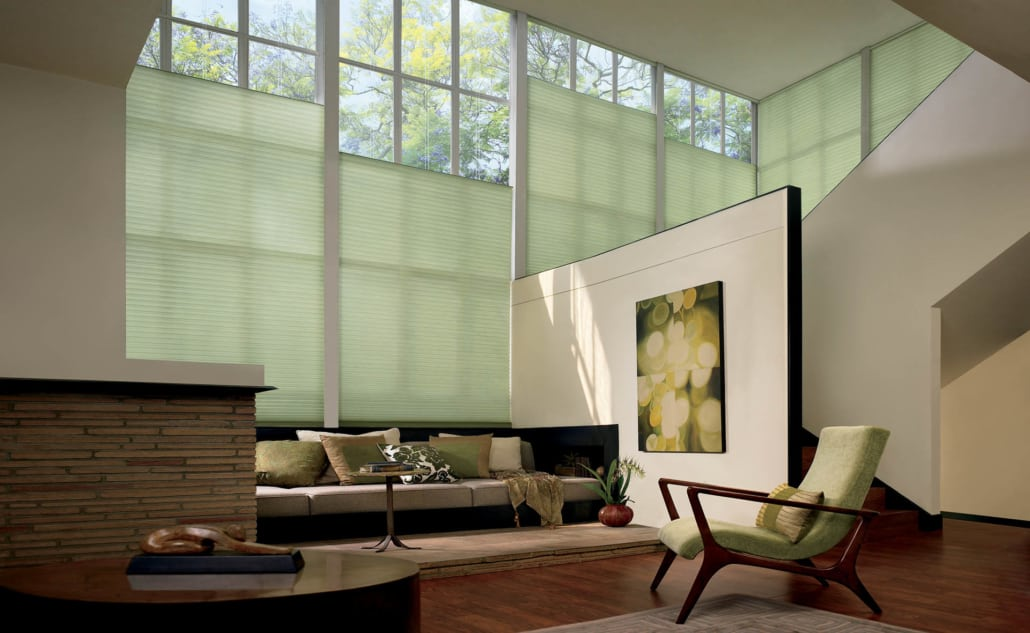Hunter Douglas Duette Architella Classic PowerView Living Room