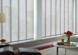 Hunter Douglas Skyline Gliding Window Panels PowerView Empire