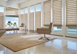 Hunter Douglas Vignette Ultraglide Drake Ash Roman Shades Living Room