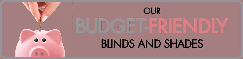 Budget-Friendly Banner artwork