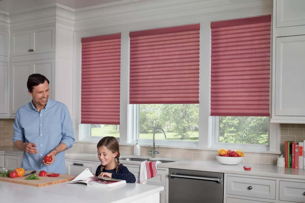 Hunter Douglas Sonnette PowerView Elan Cellular Roller Shades Kitchen