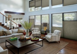 Hunter Douglas Duette Architella Northwood Living Room
