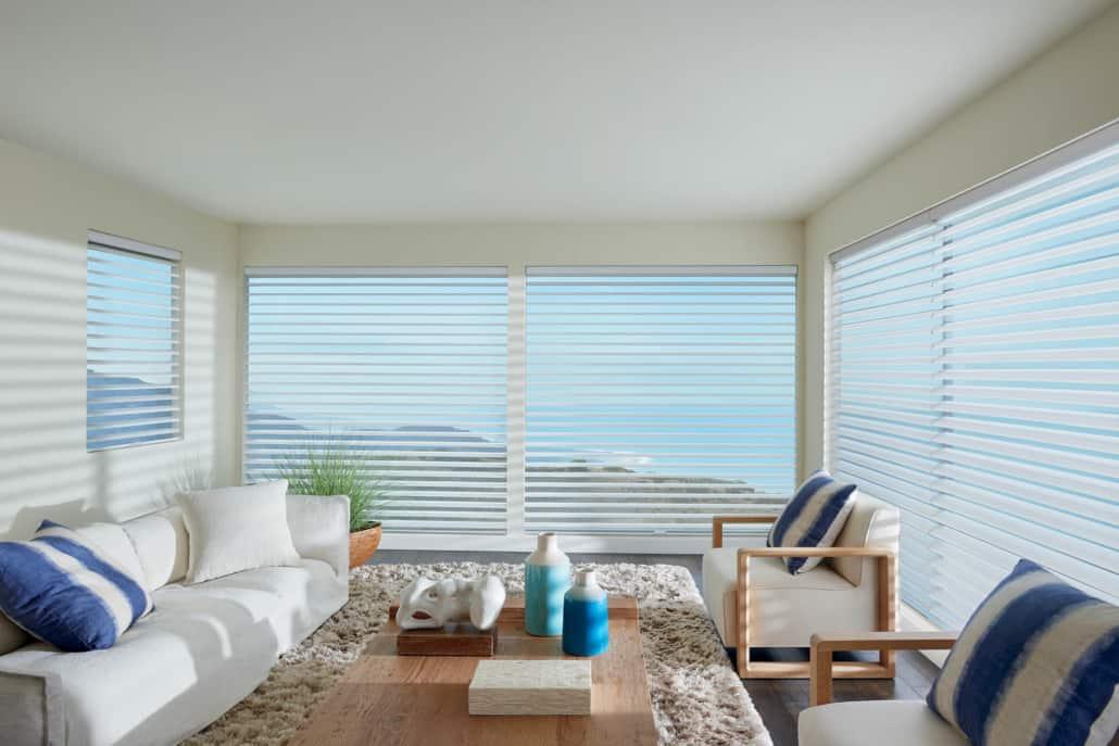 Hunter Douglas ClearView Originale Sheer Shadings Living Room
