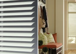 Hunter Douglas Lightlines Aluminum blinds offer control over the amount of light that you let into a room.